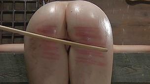 Ass BDSM