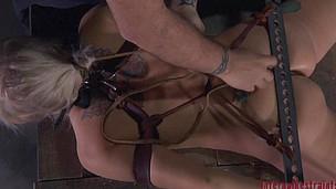 BDSM Bitch